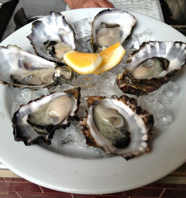6oysters